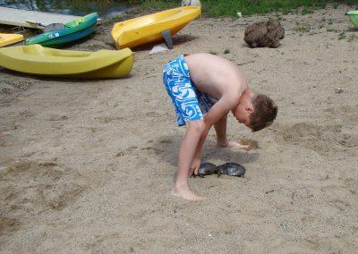 beach-turtles-pine-park