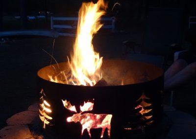 campfire-pine-park